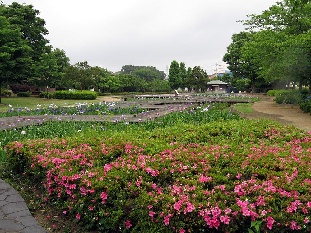 008-山崎公園