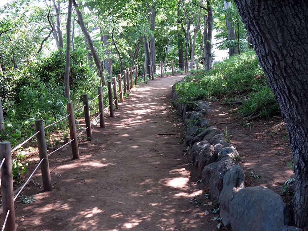 022-緑の散歩道(ハケ上西)