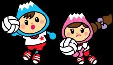 volleyballx